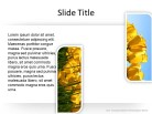 Photos 2 c PPT PowerPoint presentation slide layout