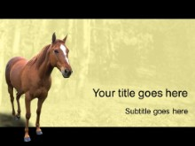 Download horse 2 PowerPoint Template and other software plugins for Microsoft PowerPoint
