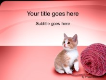 Download kitten PowerPoint Template and other software plugins for Microsoft PowerPoint