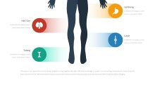 PowerPoint Infographic - 058 Body Anatomy