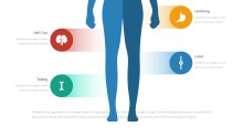 PowerPoint Infographic - 060 Body Anatomy