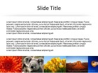 Banner Horizontal Sm 1 PPT PowerPoint presentation slide layout