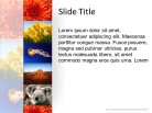 Banner Vertical Lg PPT PowerPoint presentation slide layout