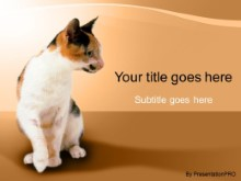 Download cat PowerPoint Template and other software plugins for Microsoft PowerPoint