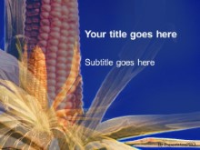 Download corn PowerPoint Template and other software plugins for Microsoft PowerPoint