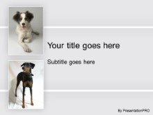 Download doggie pals PowerPoint Template and other software plugins for Microsoft PowerPoint