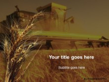 Download wheat PowerPoint Template and other software plugins for Microsoft PowerPoint