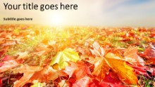 Autumn Landscape Widescreen PPT PowerPoint Template Background