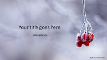 Frozen Berries Widescreen