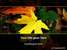Download fall leaf PowerPoint Template and other software plugins for Microsoft PowerPoint