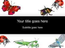 Download insects PowerPoint Template and other software plugins for Microsoft PowerPoint