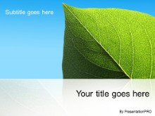 Download isolated leaf PowerPoint Template and other software plugins for Microsoft PowerPoint