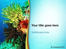 Download marine life PowerPoint Template and other software plugins for Microsoft PowerPoint
