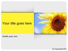 Download summer season PowerPoint Template and other software plugins for Microsoft PowerPoint