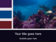 Download scuba scene PowerPoint Template and other software plugins for Microsoft PowerPoint
