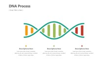 PowerPoint Infographic - DNA Infographic Layout