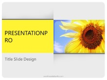 Download summer season PowerPoint 2010 Template and other software plugins for Microsoft PowerPoint
