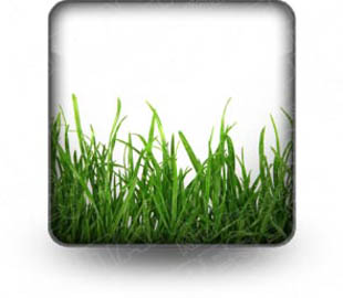 Download lawn care b PowerPoint Icon and other software plugins for Microsoft PowerPoint
